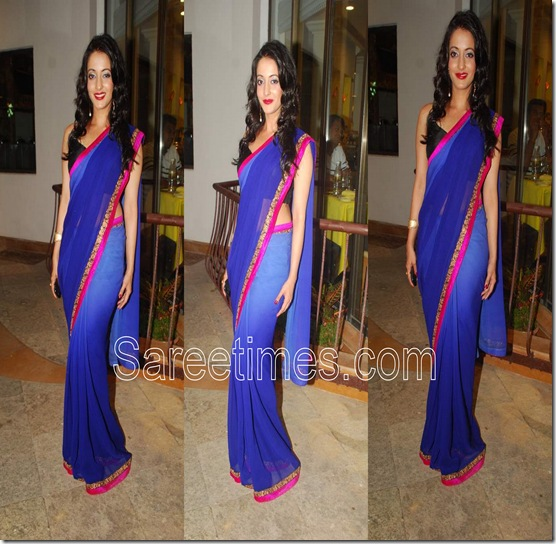 Raima Sen_Blue_Plain Saree