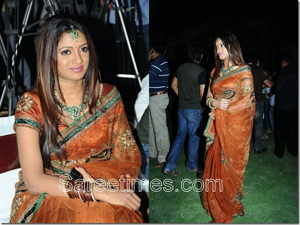 Udaya_Bhanu_Brown_Embroidery_Sari