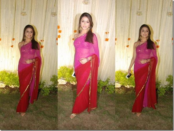 Dia_Mirza_Pink_Designer_Sari