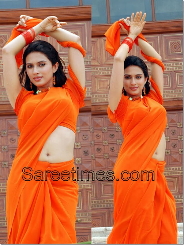 Gowri_Pundit_Orange_Plain_Sari