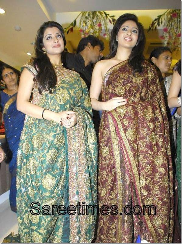 Praneetha_Nikeesha_Patel_Embroidery_Sari