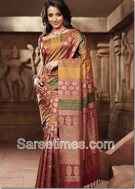 Trisha-Pothys-Saree-2