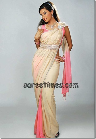 Hamsanandini-Dual-Colour-Saree