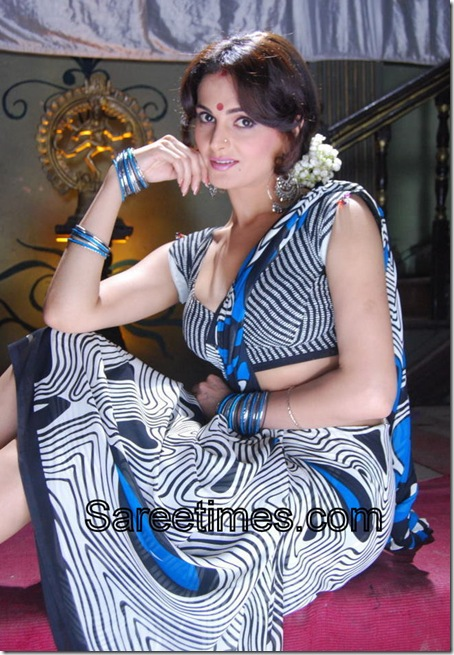 Monica_Bedi_Georgette_Saree