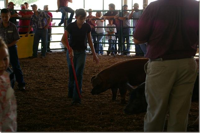Emily walking her pig