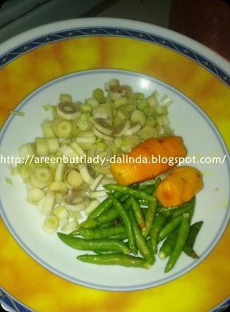 Dalindareen5400