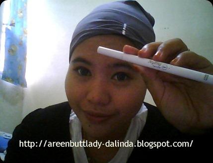 Snapshot_20110122_16