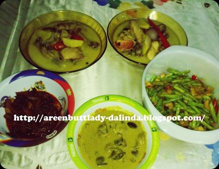 Dalindareen7093
