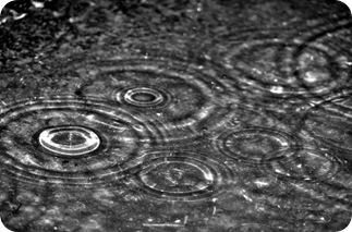chuva-5497