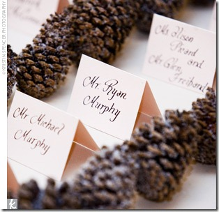 placecard - pinecone