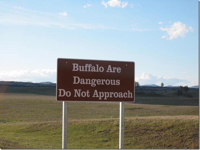 Buffalo are Dangeous