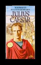shakespeare julius caesar essays