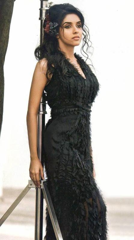 world hot actress,Asin Thottumkal, asin, nude asin, hot tamil actress, sexy tamil actress, asin hot photos