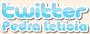 Twitter Pedra Leticia