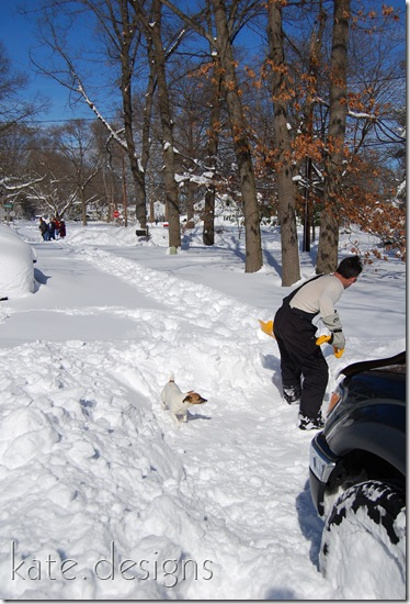 snow feb 7, 2010 002