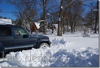 snow feb 7, 2010 042