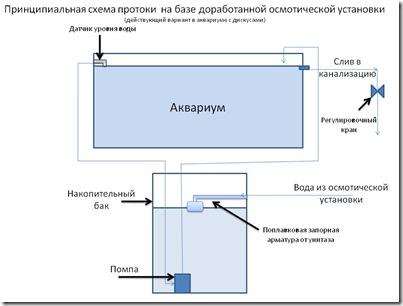 Протока_дискусы