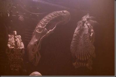 Predator2_AlienSkull