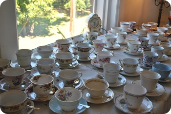 teacups waiting to be picked