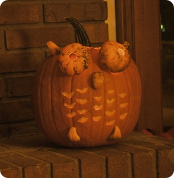 Darius the owl pumpkin