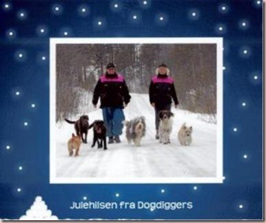 dodiggers-komprimert-300x247