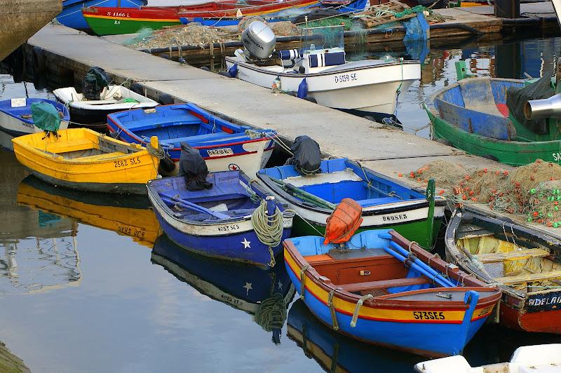 Barcos no Sado