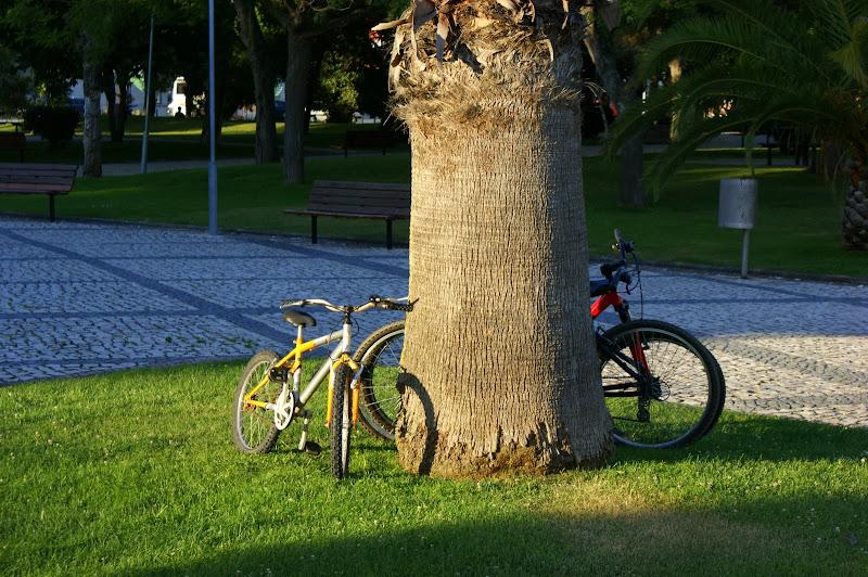 Detalhes de verão, passeios de bicicleta