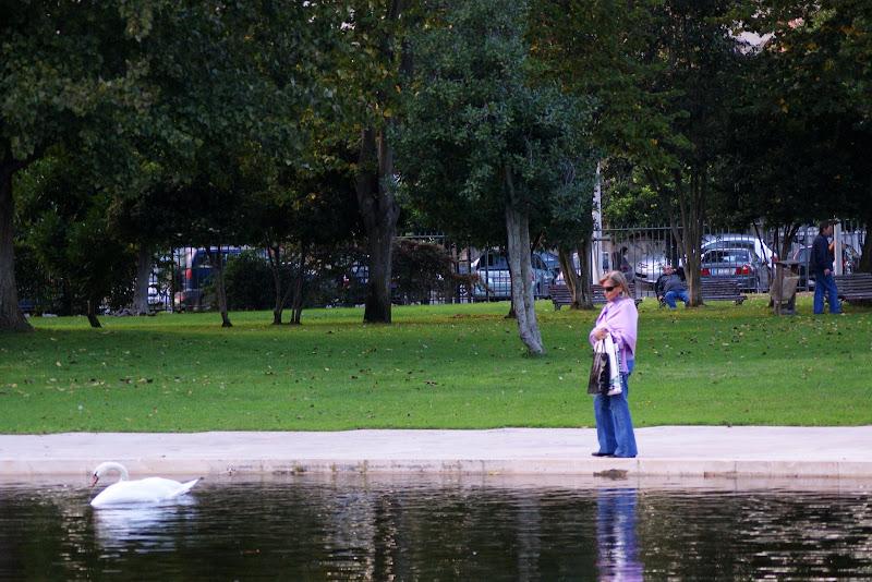 Jardim do Bonfim, a ver o cisne!