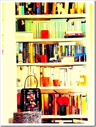 Bookshelves 027