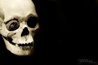 AfricanSkull
