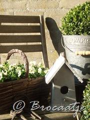 tuin maart 2010 002