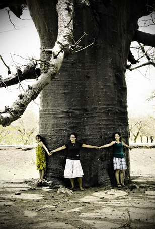 tree5_resize