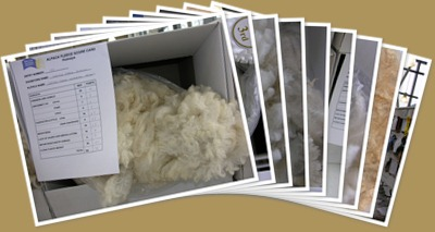 View British Alpaca Futurity 2010 Shorn Fleece