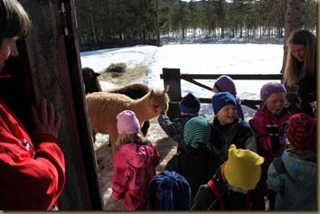 Knapper barnehage på besøk 060
