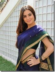 Shradha Arya – Telugu actress looking gorgeous in Saree… (5)