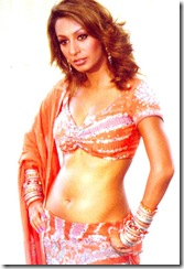 kashmira shah hot pics (7)
