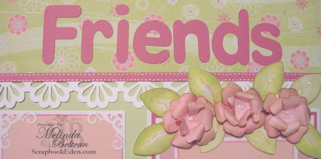 [friends closeup[3].jpg]