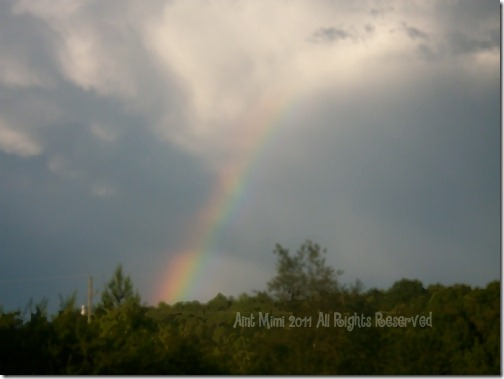 A beautiful rainbow after a storm. Simple Pleasures Volume 1