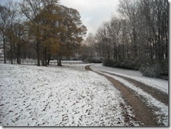snow 024