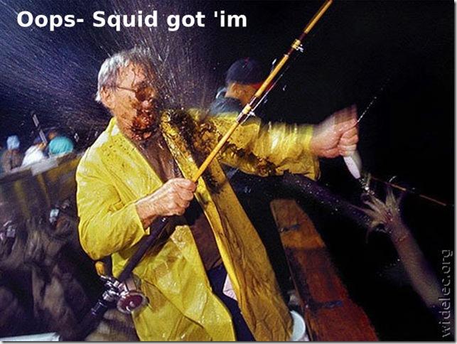Squid got him (Small)
