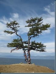 Lake Baikal (33)