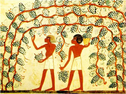 Pintura egipcia que representa la vendimia. Hacia el 1500-1300 a.C.
