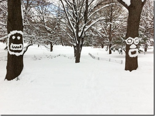 Snowtrees-smile-and-surprise-in-Central-Park_-NYC