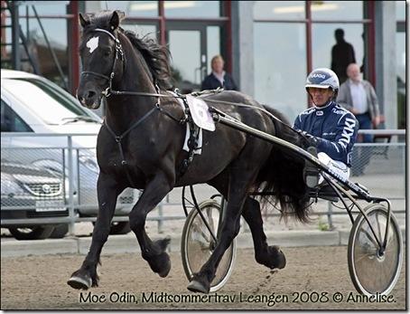 Moe-Odin-Leangen-juni2008_0