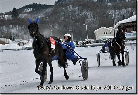 2011-orkdal_02