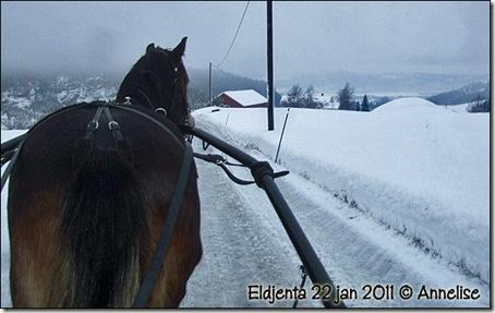 2011-22jan-jenta_01