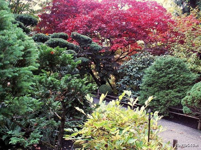 Butchart Gardens, Victoria (Canada)