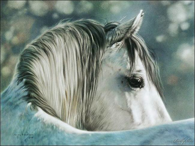 Art: Lesley Harrison's Realistic Paintings
