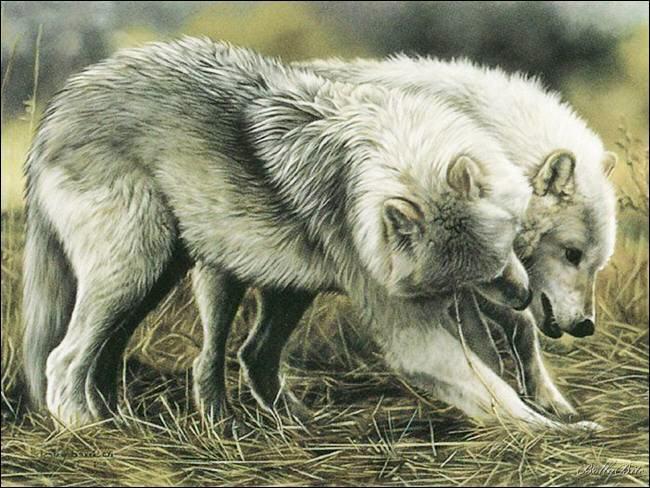 Art: Lesley Harrison's Realistic Paintings