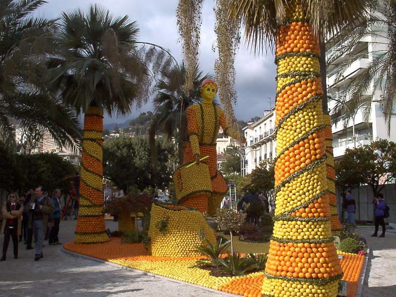 Orange Festival in Netherlands !!